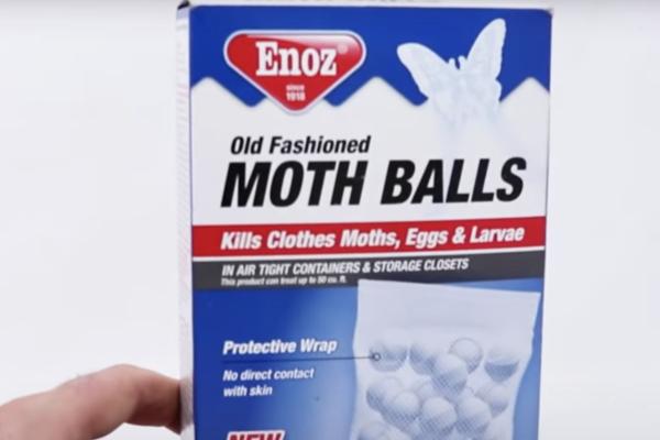 Mothball-Bat-Prevention