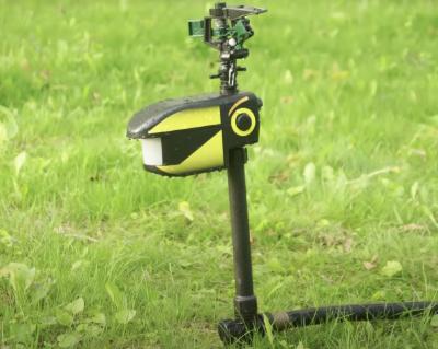 Raccoon-Auto-Sprinkler-Repel