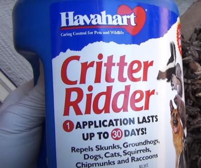 Raccoon-Critter-Ridder-Repel